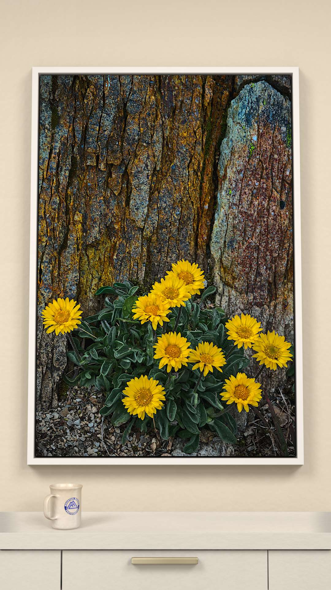 Golden fleabane Canvas Wall Art